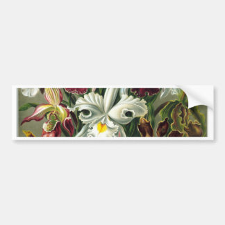 Vintage Flower Bouquet Bumper Stickers