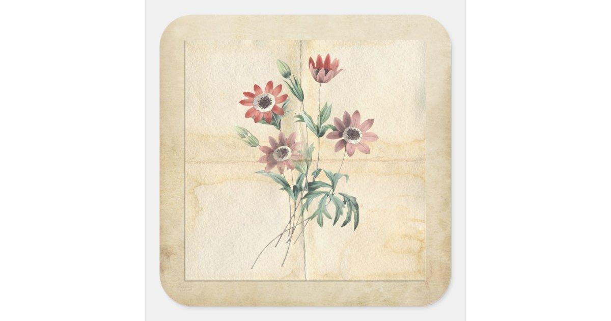Vintage Flower Collage Scrapbook Embellishment Square Sticker Zazzle Com