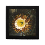 Vintage Flower Night-Blooming Cereus Thornton Gift Boxes