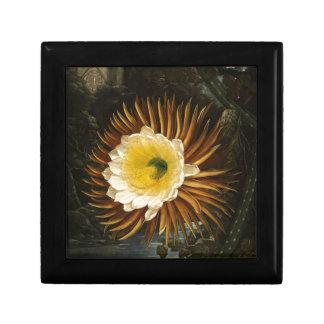 Vintage Flower Night-Blooming Cereus Thornton Jewelry Box