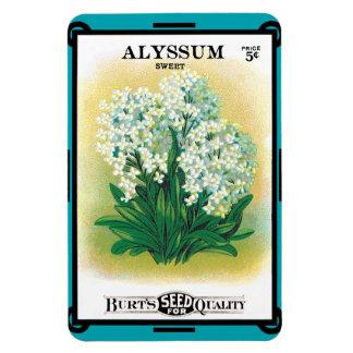 Vintage Flower Seed Alyssum Magnet