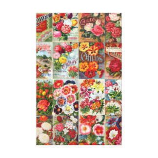 Vintage Flower Seed Packets Garden Collage Stretched Canvas Print
