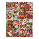 Vintage Flower Seed Packets Garden Collage Postcard