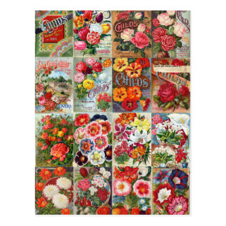 Vintage Flower Seed Packets Garden Collage Postcard