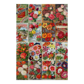 Vintage Flower Seed Packets Garden Collage Poster