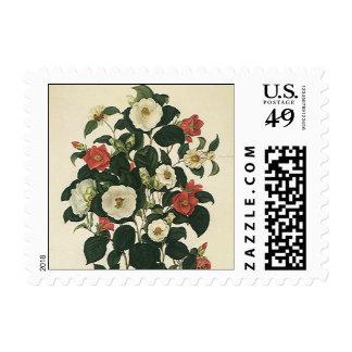 Vintage Flowers, Antique Floral Garden Roses Postage Stamps