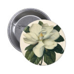 Vintage Flowers, Blooming White Magnolia Blossom Pinback Buttons