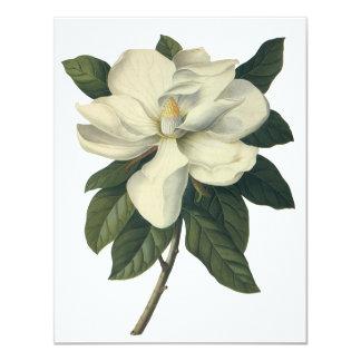 "Vintage Flowers, Blooming White Magnolia Blossom 4.25"" X 5.5"" Invitation Card"