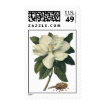 Vintage Flowers, Blooming White Magnolia Blossom Postage Stamps