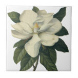 Vintage Flowers, Blooming White Magnolia Blossom Small Square Tile