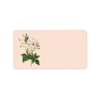 Vintage Flowers Floral Blush Noisette Rose Redoute Labels