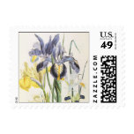 Vintage Flowers, Floral Botany, Garden Irises Stamp