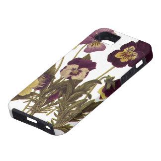 Vintage Flowers, Floral Garden Pansies in Bloom iPhone 5 Case