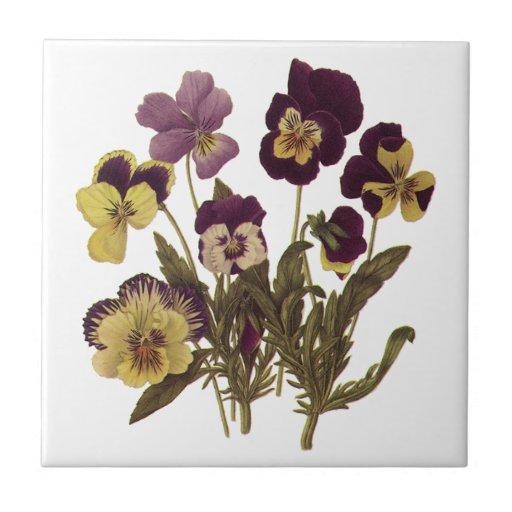 Vintage Flowers, Floral Garden Pansies in Bloom Tiles