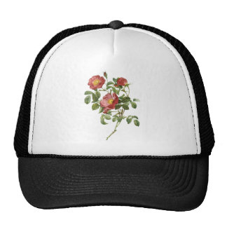 Vintage Flowers Floral Red Rose of Love by Redoute Trucker Hat