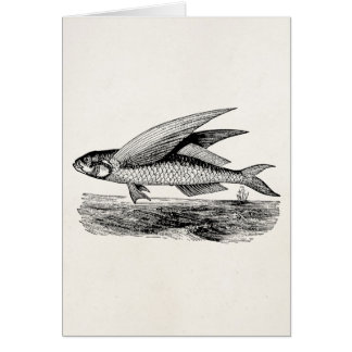 Vintage Flying Fish - Aquatic Fishes Template Card