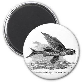 Vintage flying fish fridge magnet