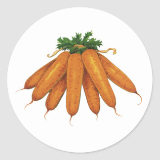 Vintage Food, Bunch of Organic Carrots Vegetables Classic Round Sticker