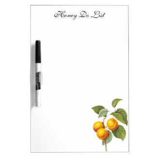 Vintage Food Fruit, Apricot Peach by Redoute Dry Erase Board