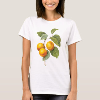 Vintage Food Fruit, Apricot Peach by Redoute T-Shirt