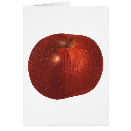 Vintage Food Fruit, Organic Red Delicious Apple Greeting Cards