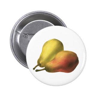 Vintage Food Fruit, Organic Ripe Pears Pinback Buttons
