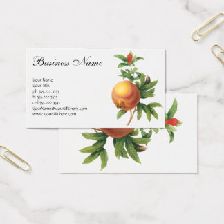 Vintage Food Fruit, Pomegranate by Redoute Business Card