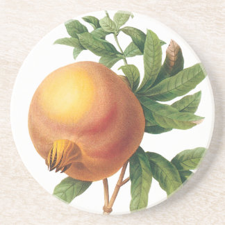 Vintage Food Fruit, Pomegranate by Redoute Coaster