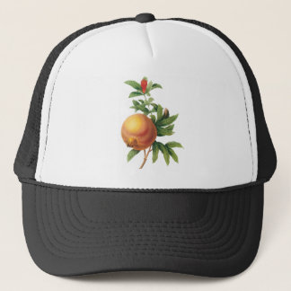 Vintage Food Fruit, Pomegranate by Redoute Trucker Hat