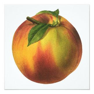Vintage Food Fruit, Ripe Organic Peach with Leaf Card