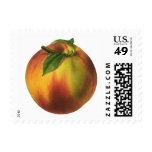 Vintage Food Fruit, Ripe Organic Peach with Leaf Postage Stamp