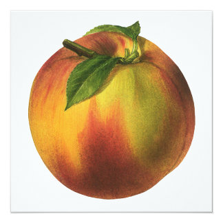 Vintage Food Fruit, Round Ripe Peach with Leaf 5.25x5.25 Square Paper Invitation Card