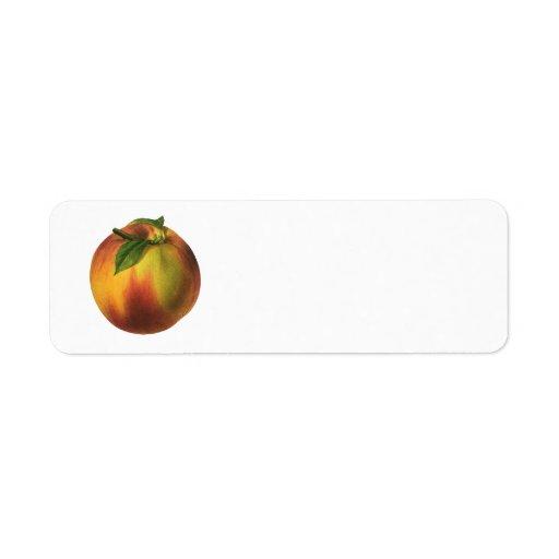 Vintage Food Fruit, Round Ripe Peach with Leaf Custom Return Address Labels