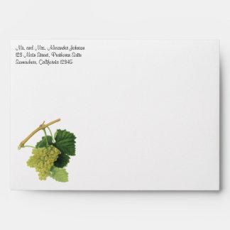 Vintage Food Fruit, White Wine Grapes on the Vine Envelopes