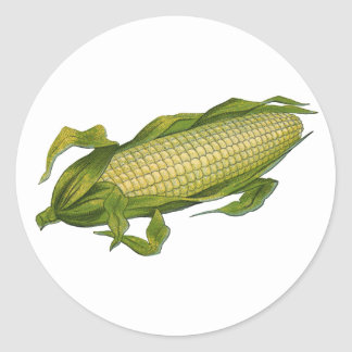 Vintage Food, Healthy Vegetables, Corn on the Cob Classic Round Sticker