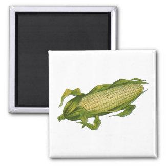 Vintage Food, Healthy Vegetables, Corn on the Cob Magnet