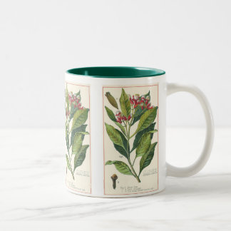 Vintage Food Herbs Spices, Botany of Cloves Two-Tone Coffee Mug