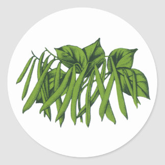 Vintage Food, Organic Green Beans Vegetables Classic Round Sticker