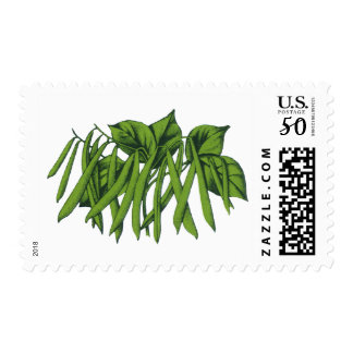 Vintage Food, Organic Green Beans Vegetables Postage