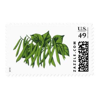 Vintage Food, Organic Green Beans Vegetables Postage