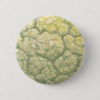 Vintage Food Vegetables Veggies Cauliflower Button