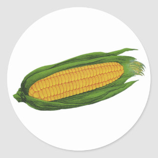 Vintage Food Vegetables; Yellow Corn on the Cob Classic Round Sticker