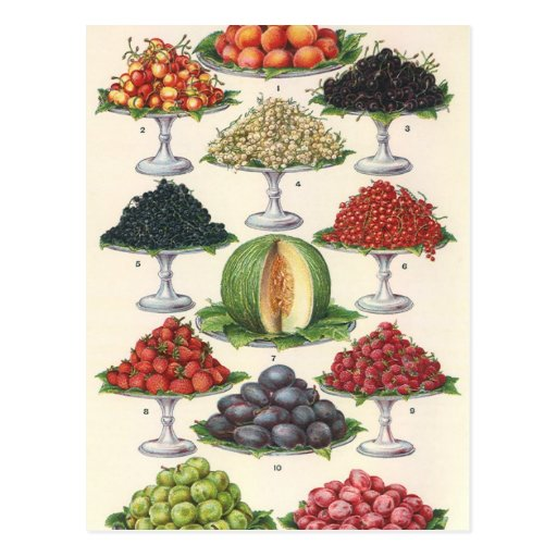 Vintage Foods Assorted Fruit on Trays for Catering Post Cards