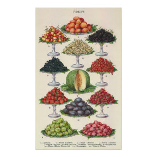 Vintage Foods Assorted Fruit on Trays for Catering Poster
