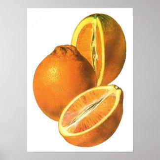 Vintage Foods, Fruit Organic Fresh Healthy Oranges Print