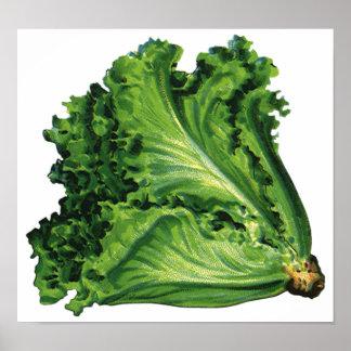 Vintage Foods, Green Leaf Lettuce Vegetables Poster