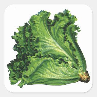 Vintage Foods, Green Leaf Lettuce Vegetables Square Sticker