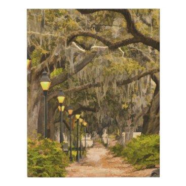 USA Themed Vintage Forsyth Park Travel Photography - Savannah Faux Canvas Print