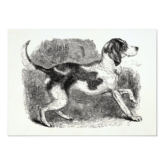 Vintage Fox Hound Dog 1800s Hounds Dogs Template Card