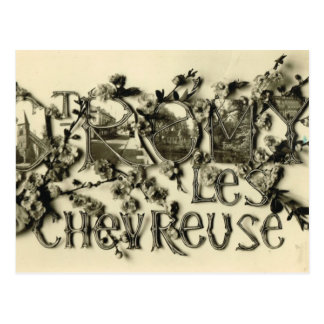 Vintage France Sr Romy Le Chevreuse Postcard